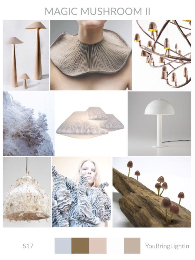 paddenstoel-magic-mushroom2